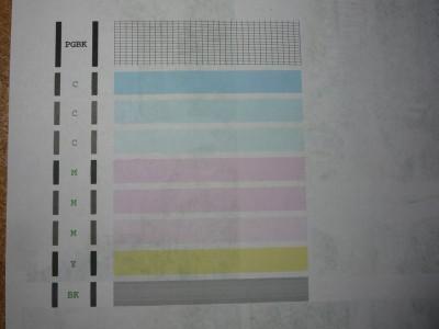 P1060639.JPG
